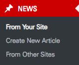 Screenshot of WordPress admin news menu after update.