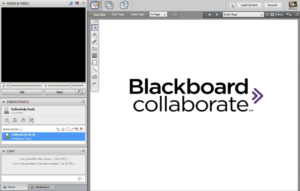 Blackboard Collaborate window